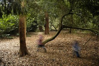 Zapojování smyslů při lesní schovávané.