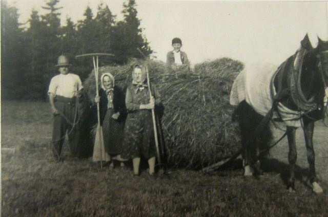 Muži do lesa, ženy na meze aneb genderové role v zemědělství v německých východních Krkonoších na počátku 20. století