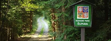 Hranice národního parku Šumava.