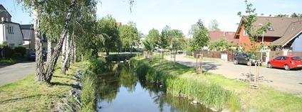 Říčanský potok v ulici Mikova v Dubči, Praha Foto: Jiří Sedláček Wikimedia Commons