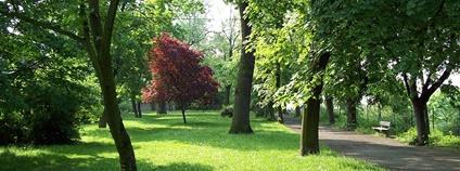 Mělník - park Na Polabí Foto: Kacir Wikimedia Commons