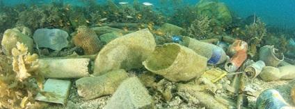 Plasty na dně oceánu Foto: Rich Carey Shutterstock