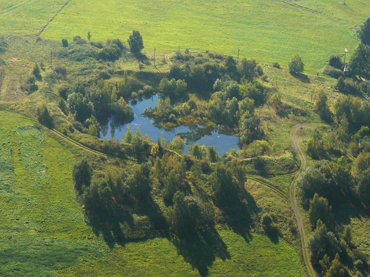 Každý, i velmi malý rybník, je výrazným centrem biodiverzity v přírodě.