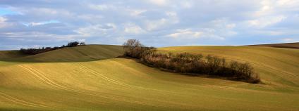 zemědělská krajina Foto: Petr Hykš Flickr