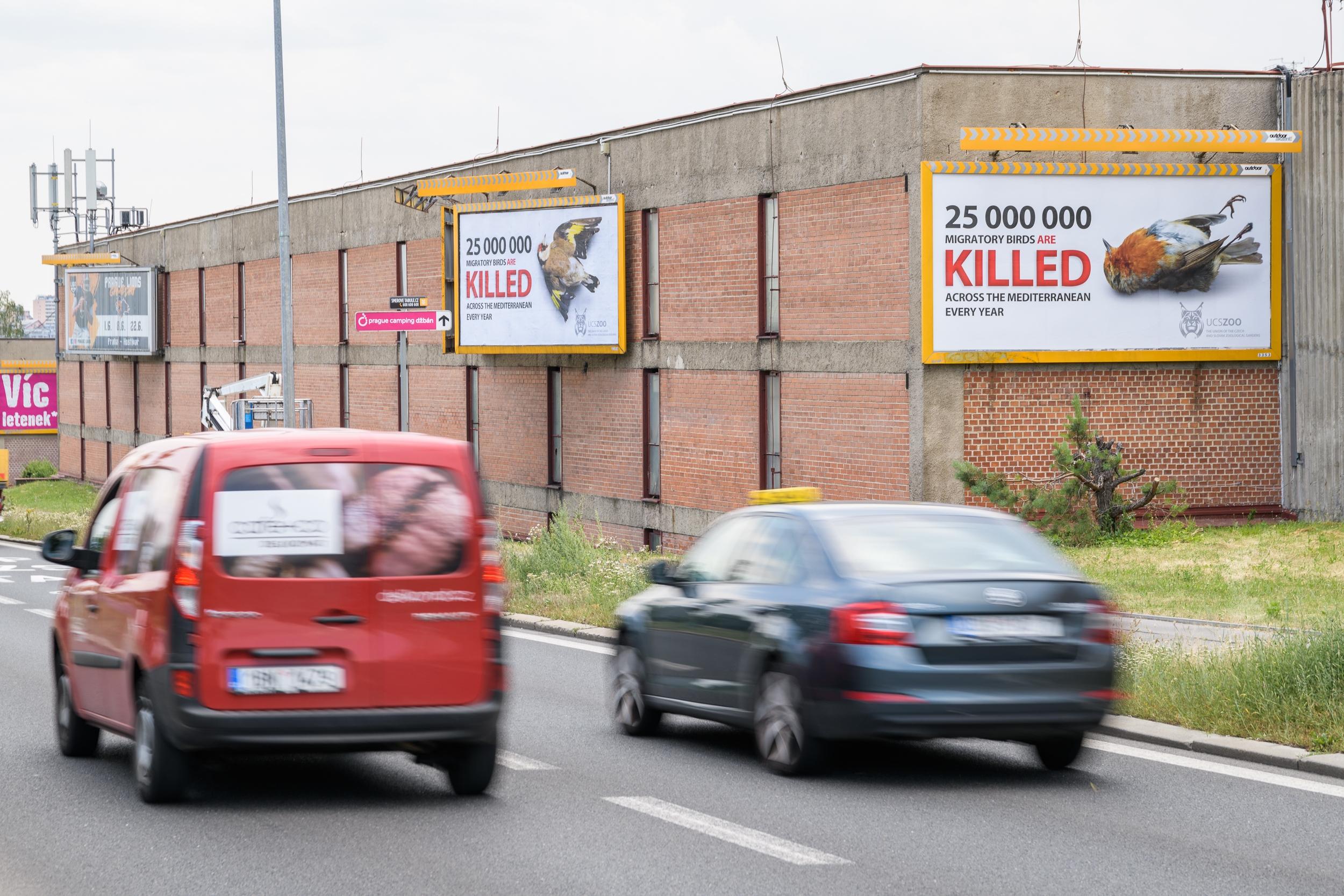 Unie českých a slovenských zoologických zahrad umístila u silnic vedoucích z pražského a bratislavského letiště do center těchto metropolí billboardy, které poukazují na masakry tažných ptáků ve Středomoří. Čtyři billboardy jsou v Praze na Evropské třídě.