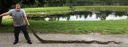 Foto: Florida Fish and Wildlife / Flickr