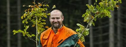 Sázení stromků v KRNAP