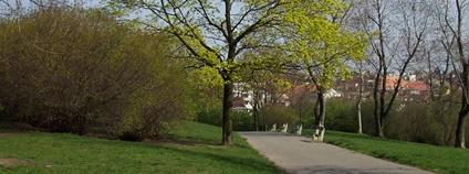 Sady Vítkov v Praze Foto: Aktron Wikimedia Commons