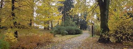 Zámecký park Kinských ve Valašském Meziříčí Foto: Radim Holiš Wikimedia Commons