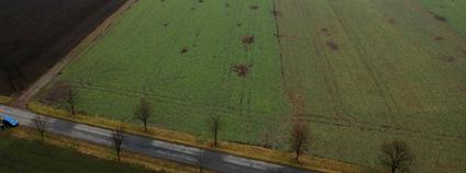 Pole, kde působí hraboš.