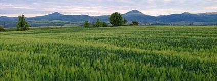 Pohled na Milešovku a České středohoří z pole mezi Rtyní a Modlany nedaleko obce Suché