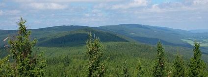 Foto:  Jiří Komárek / wikimedia commons