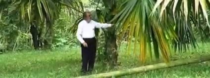 Alberto Goméz, zakladatel botanické zahrady v kolumbijském Quindiu Foto: JARDÍN BOTÁNICO DEL QUINDÍO