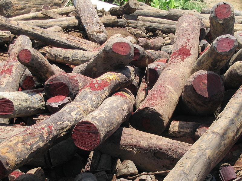 silice z růžového dřeva UNIQ Cosmetics