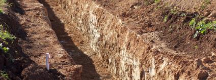 Bagrování na bývalém poli Foto: Agostinho Goncalves Shutterstock