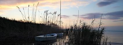 Jezero Balaton v Siofoku Foto: Stefan Munder Flickr