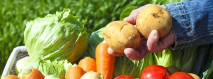 Bedýnka se zeleninou Foto: kazoka / Shutterstock