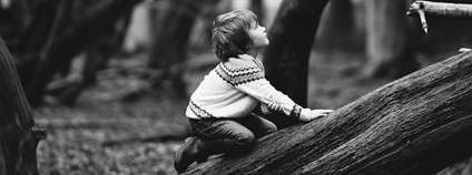 Chlapec v lese Foto: pixabay