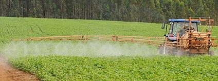 Zemědělství v Brazílii Foto: Pedro Ventura/Agência Brasília Flickr