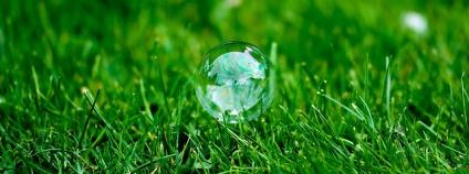 Bublina v trávě Foto: Mike Haller Flickr