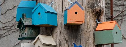 Spoluobývání jako alternativní model bydlení