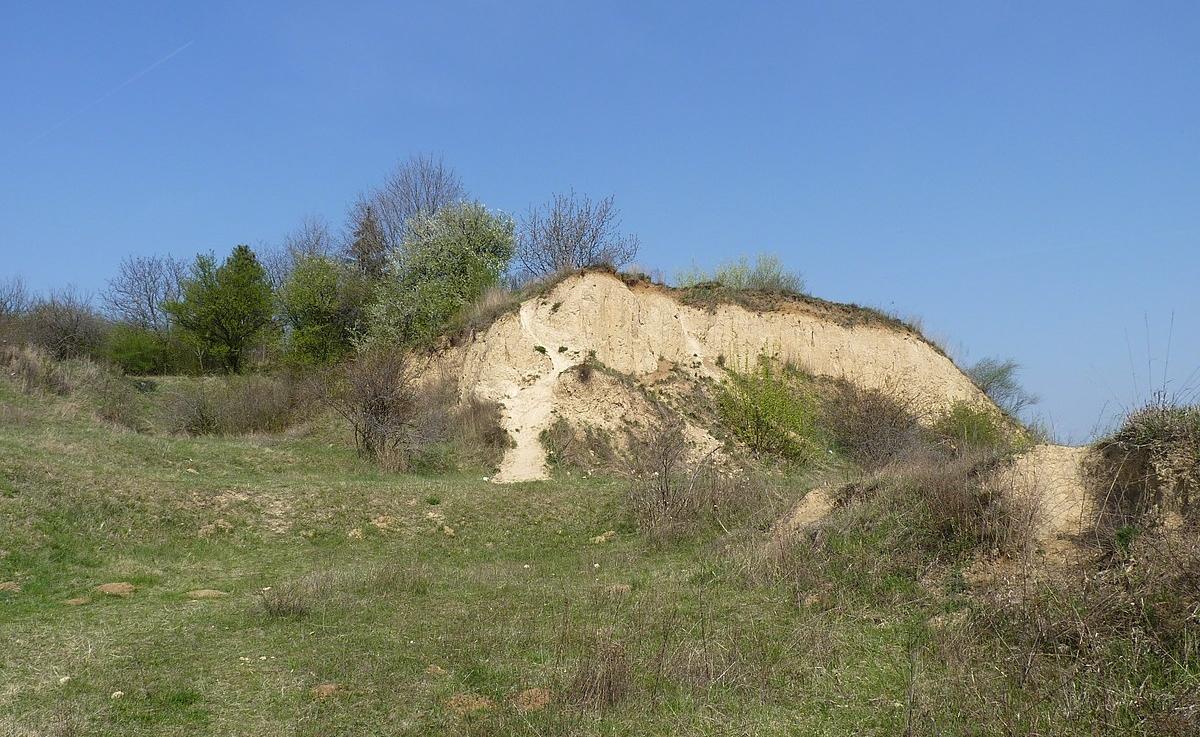 Brno chce postavit dvacetimetrovou rozhlednu na Červeném kopci
