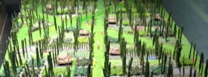 """Tradiční aztécká zemědělská metoda zvaná """"chinampas"""". Foto: Travis Flickr"""