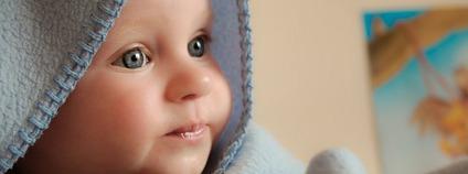 Dítě Foto: jarmoluk / Pixabay.com