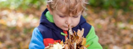 Chlapec se spadaným listím Foto: Irina Schmidt / Shutterstock