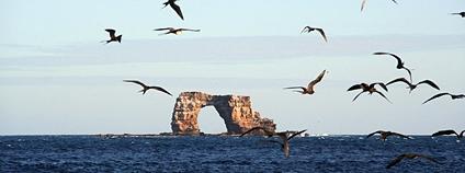 Bývalý Darwinův oblouk na Galapágách Foto: cattan2011 Flickr