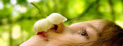 Dívka s květinou Foto: talkingplant / Flickr.com