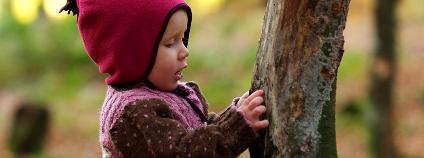 Holčička zkoumá kmen stromu Foto: Ernst Vikne / Flickr