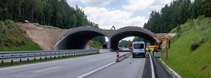Ekodukt u Humpolce Foto: Ředitelství silnic a dálnic / Facebook