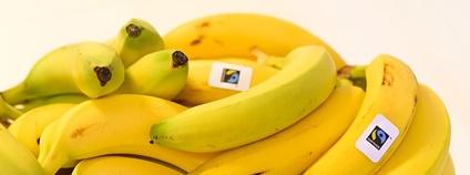 Faitrade banány Foto: Juliamh123 Wikimedia Commons
