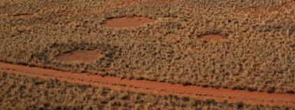 Záhadné kruhy v Africe Foto: Vernon Swanepoel Flickr