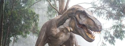 Tyranosaurus rex Foto: Fausto García-Menéndez Unsplash