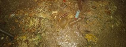 Tlející kuchyňský odpad Foto: ČIŽP