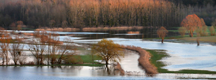 Rozlití vody v krajině při povodni Foto: Yves Bernardi Pixabay