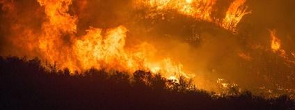 Lesní požár v Kalifornii Foto: Piqsels