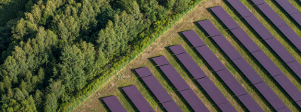 Fotovoltaika Foto: Mariusz Szcygiel / Shutterstock