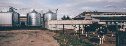 Zemědělské družstvo v Haňovicích Foto: E.ON Energy Globe