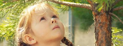 Holčička před smrkem Foto: Oleg Kirillov / Shutterstock