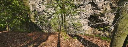 Hranický kras Foto: Jiří Komárek Wikimedia Commons