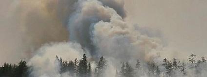 Požár lesa na Sibiři