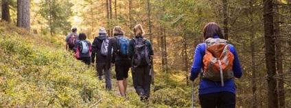 Turisté mohou letos vyrazit na čtyři nové trasy do nejvzácnějších lokalit Šumavy. Jde o součást programu Průvodci divočinou. Šumavský národní park umožní návštěvníkům například výpravu za bobry. Registrace pro zájemce se otevře na webu parku (https://eshop.npsumava.cz) v pátek 15.5.2020 v 9:00.