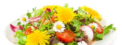 Jedlé květy na talíři Foto: Inga Nielsen / Shutterstock