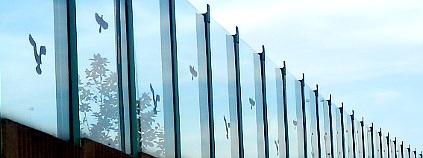Nálepky se siluetami dravců na Karlovarské ulici v Praze