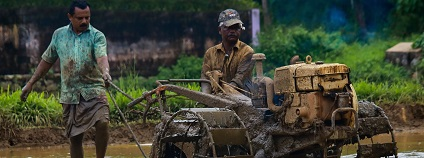 Zemědělec v Indii Foto: nandhukumar pixabay.com