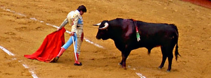 Toreador v aréně s tmavým býkem Foto: Grapatax Wikimedia Commons