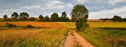 Pestrá zemědělská krajina Foto: Alexander Steinhof Flickr